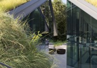 Geometric Architecture Sleek Glass Wall Green Roof Metallic Railing on Outdoor Staircase